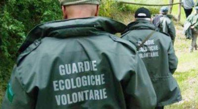Corso di formazione ON LINE per diventare Guardie Ecologiche Volontarie